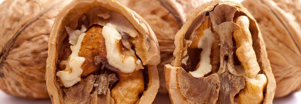 Consommation de noix et obésité