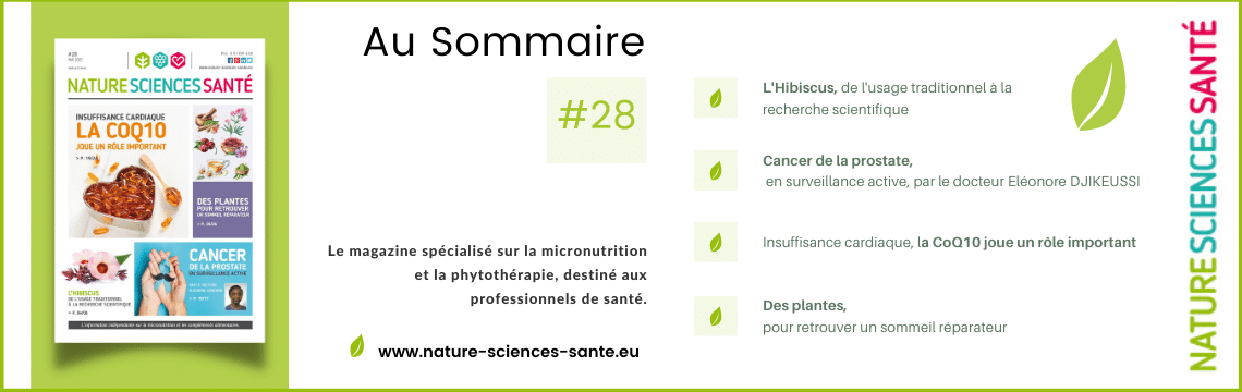Sommaire #28